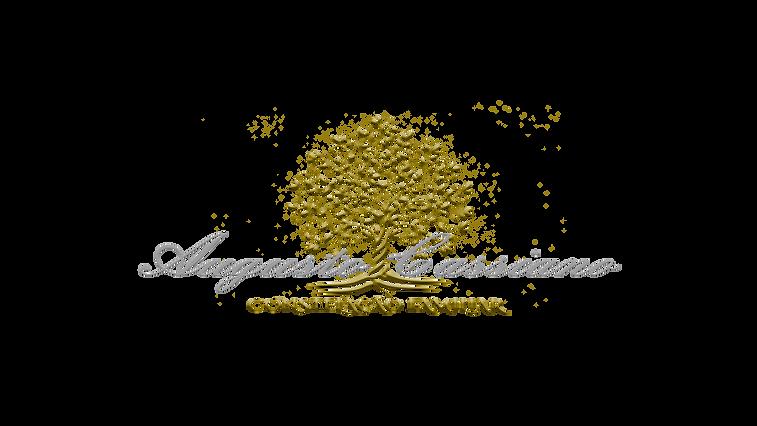 Logo Augusto vazado.png