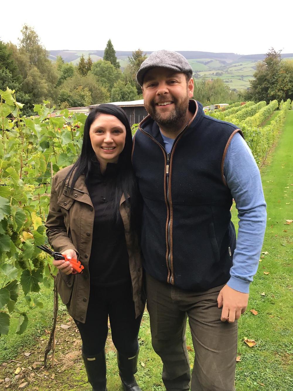 Montgomery vineyard
