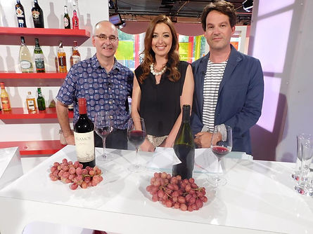 Wine expert, Television, S4C