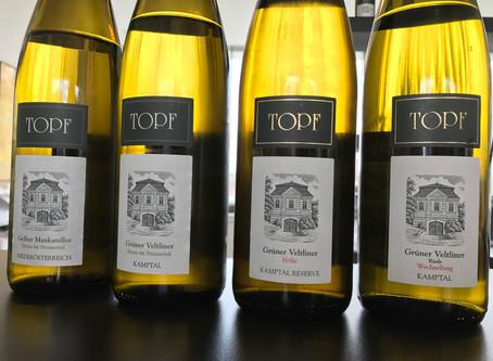 Our Austrian Wine Trip