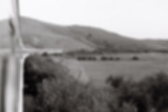 train-15.jpg