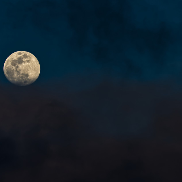 Luna 273