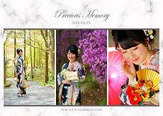 preciousmemory2.jpg