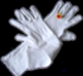 De handschoenen en ring.
