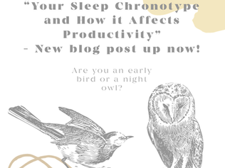 Your Sleep Chronotype and How it Affects Productivity
