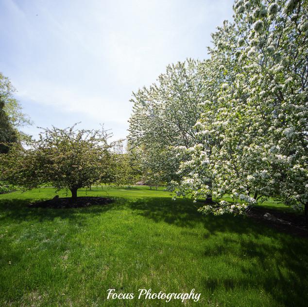 Mowfield-Farm-106.jpg