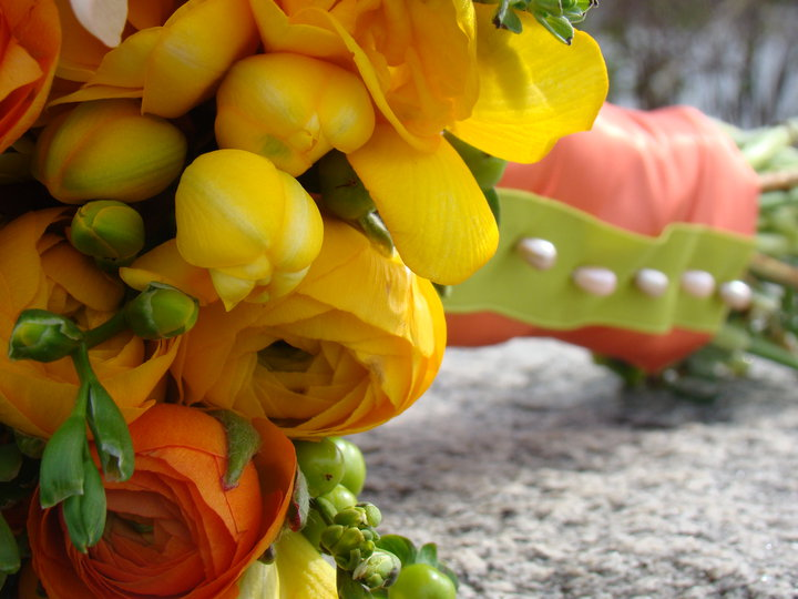 Yellow and Orange Ranunculus