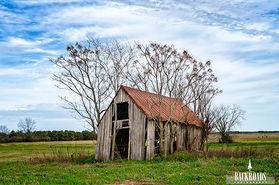 Chinaberry Barn