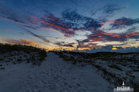Cape San Blas Dunes