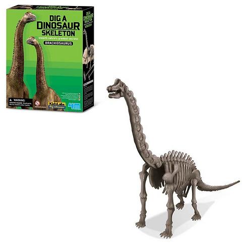 Experimento Arqueología Brachiosaurus