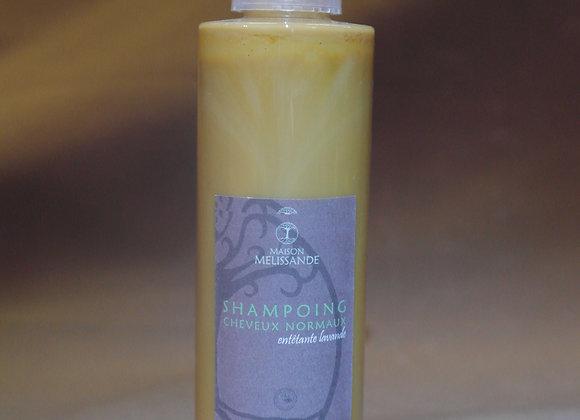 """Shampoing liquide """"entêtante Lavande"""" pour cheveux normaux"""