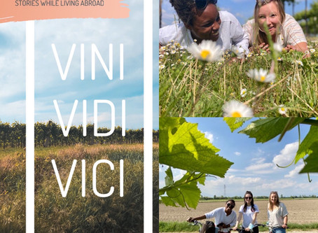 Some Masks, Some Friends, and a Vineyard | VINI, VIDI, VICI