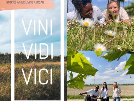 Some Masks, Some Friends, and a Vineyard | VINI, VIDI, VICI