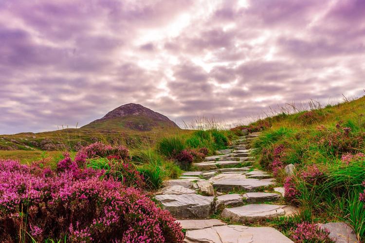 Irland Mountains - Bild von Jonas Fehre