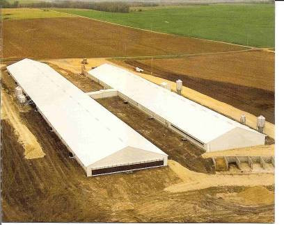 Put Moratorium on CAFOs: JFAN Letter to the Editor in Fairfield Ledger