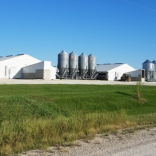 Vox and DM Register: Two Powerful Articles on CAFOs Plus a Must-Read Blog Post by Dr. Chris Jones