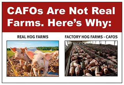 CAFOs Are Not Real Farms - New JFAN Ad!