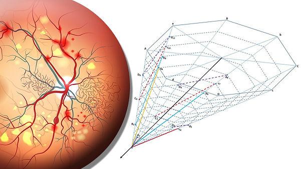 syntactic retina