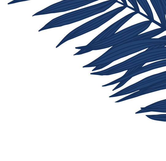 website graphic palm leaves 2.png