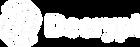 decrypt logo.png