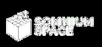 somnium space logo.png