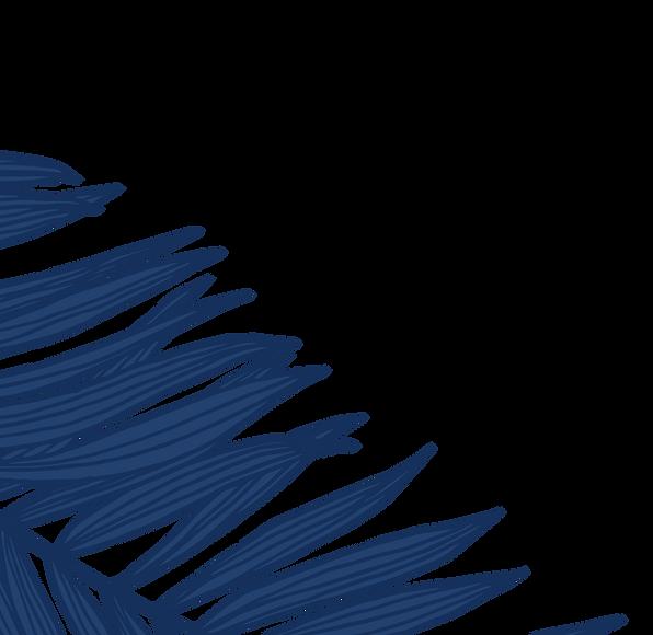 website graphic palm leaves 2_edited_edi