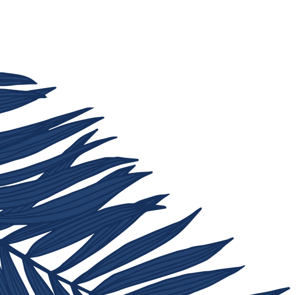 website graphic palm leaves 2_edited_edited_edited.png