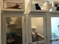 Kitty Sky Boxes