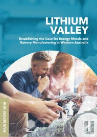 lithium Valley report cover.jpg