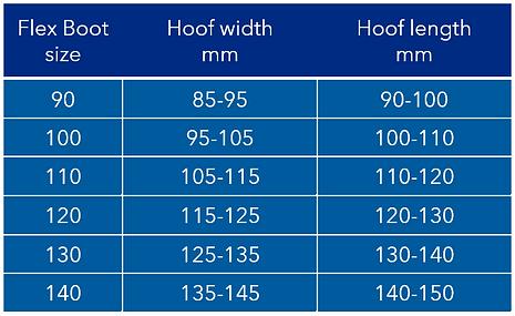 Flex Boot size chart.PNG