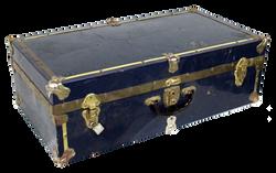 Medium Navy Trunk