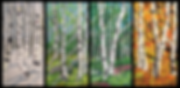 birchtrees.png