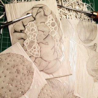 Carving images for PBS International