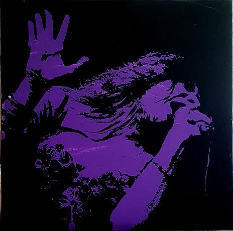 Janis-schilderij45x45.jpg