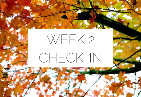#TIU31 Week Two Check-In