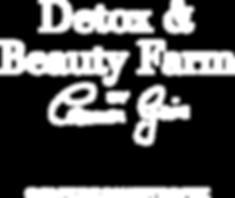 191017_Detox-Farm_Logo-Vektor.png