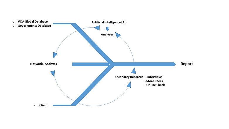 Methodology EN.jpg