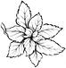 Ara-herbe logo pec.png