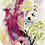 Thumbnail: BIRDS | Fine Art Print