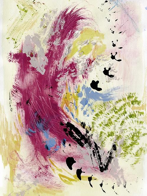 BIRDS | Fine Art Print