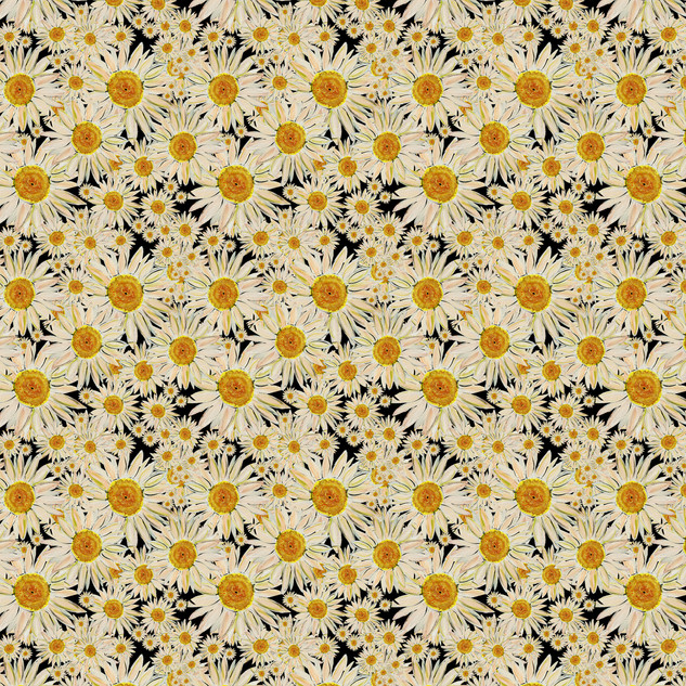 DAISY PRINT FOR INSTA1.jpg