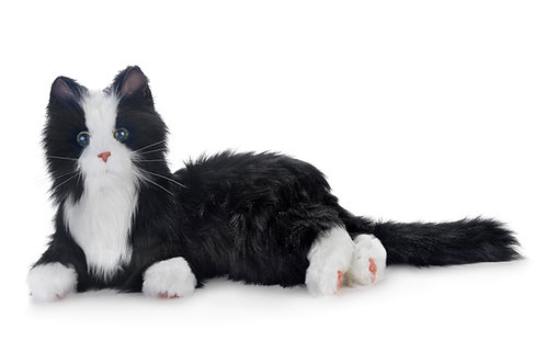 Joy For All - Black and White Tuxedo Cat