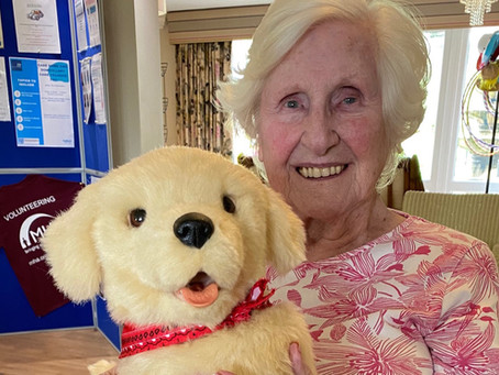 RoboPets provide comfort and joy for MHA Care Home residents living with dementia