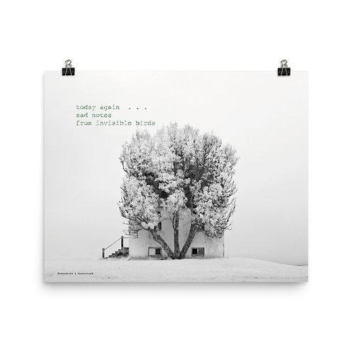 Photo-Haiku Poster