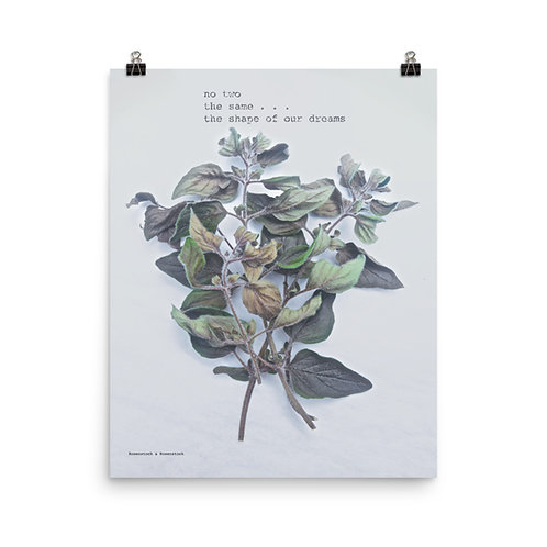 Photo-Haku Poster