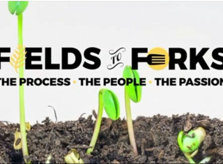 Fields to Forks, CTV News: Environment and agriculture working together at demo farm