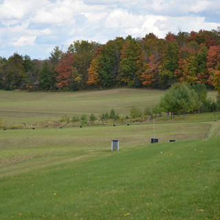 Fall colours at the Demo Farm