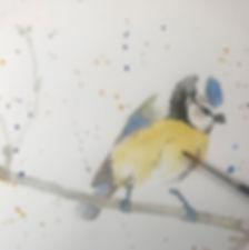 seachickenbird (1).jpg