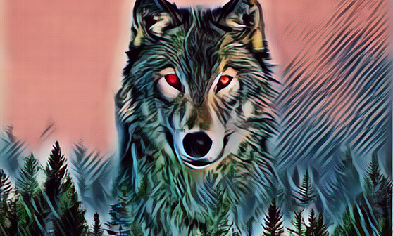 A Wolf In Our Midst