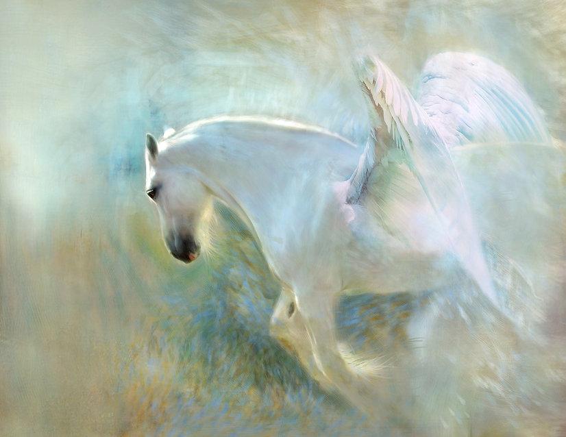 Soul Healing & Soul Retrieval with the Unicorns